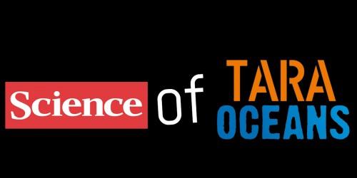 Présentation des premiers résultats scientifiques issus de l'expédition Tara Oceans et issus du projet OCEANOMICS. Videos de la journée de séminaires donnés à la Maison des Oceans à Paris le 2 juin 2015